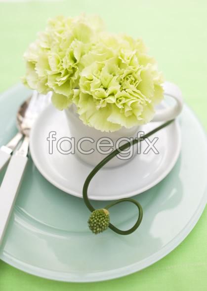 Indoor flower 29