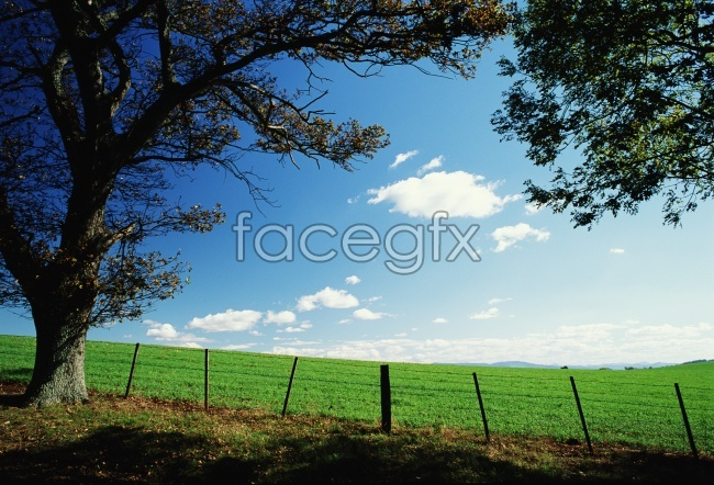 Countryside high definition pictures