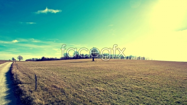 Fresh artistic conception aesthetic wallpapers pictures