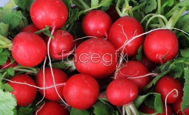 HD vegetable pictures