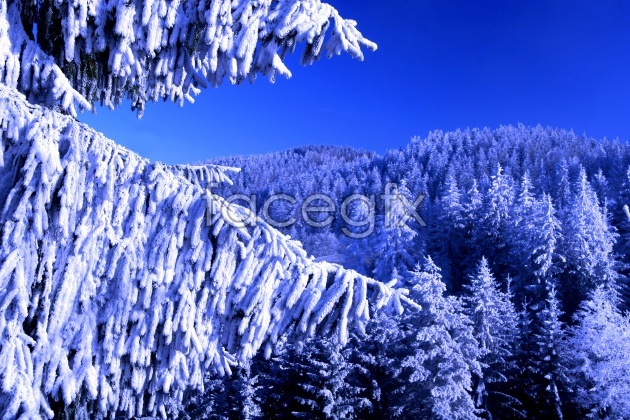 HD snow pho