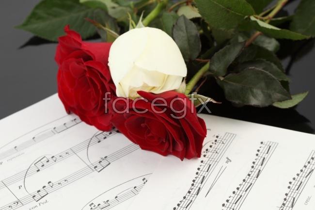 Roses sheet music