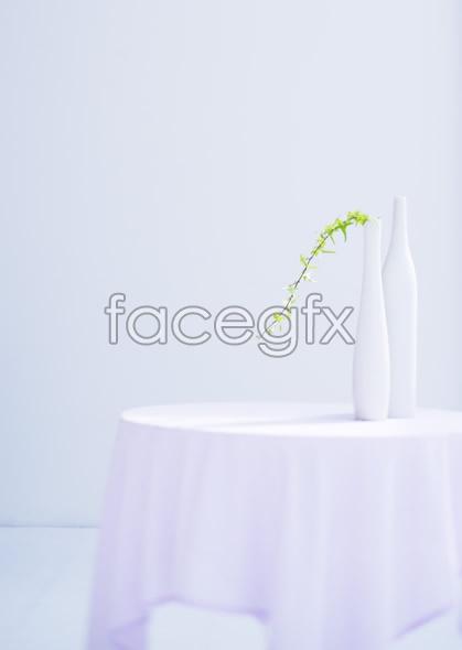 Indoor flower 54
