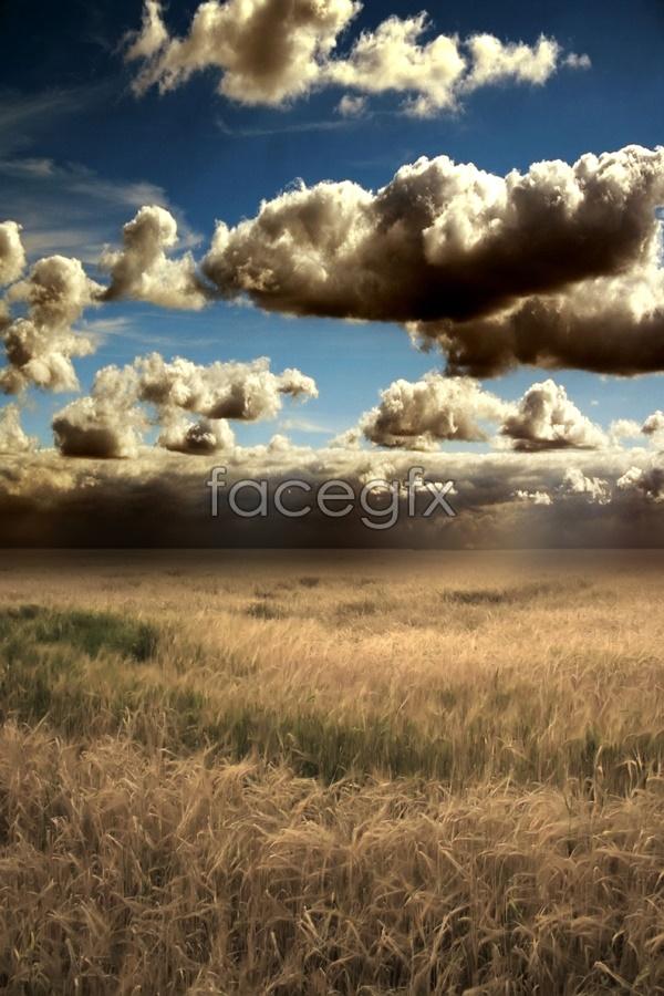 Prairie sky scenery picture
