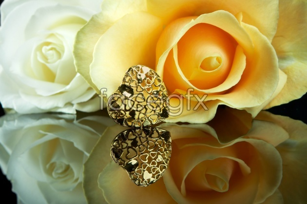 Yellow roses for Valentine picture