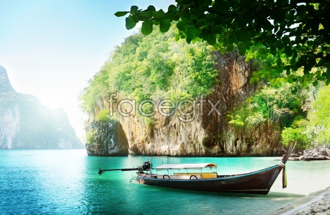 Fresh and natural landscape picture