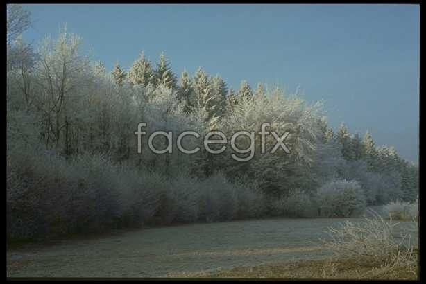 Ice 640