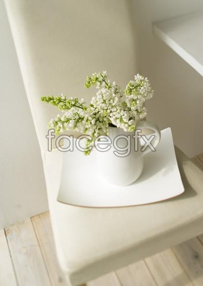 Indoor flower 70
