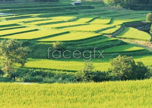 Idyllic villages 127