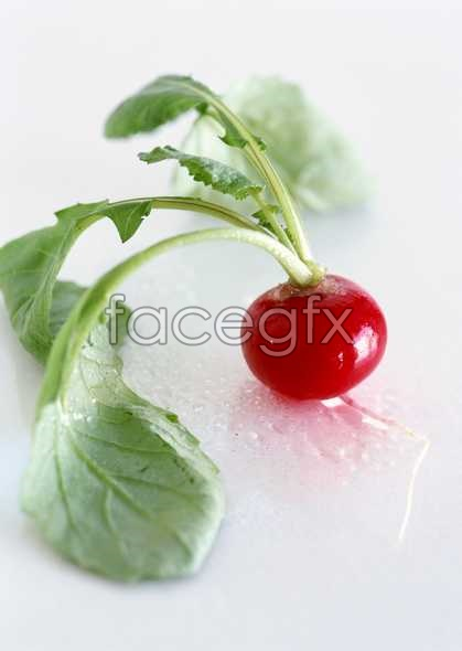 Fresh fruits and vegetables, 368