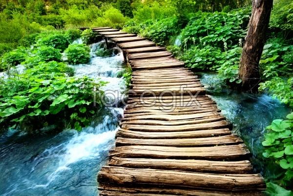HD wooden landscape picture