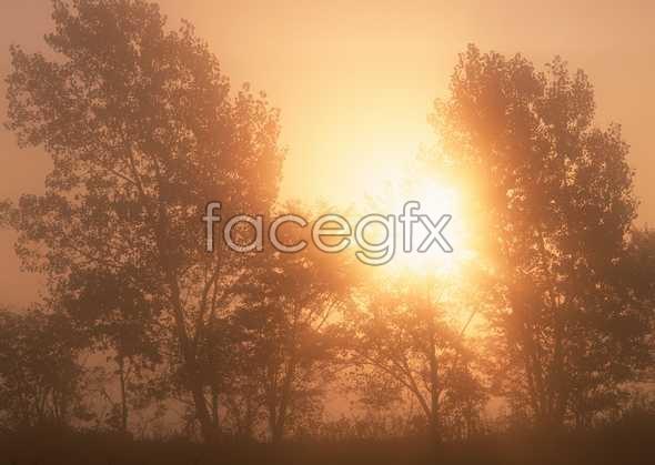 Dusk of dawn 69