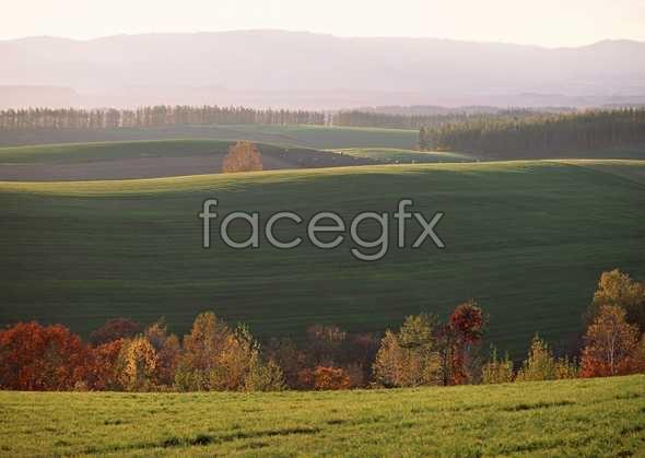 Idyllic village 84