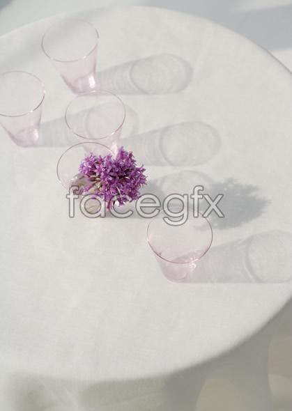 Indoor flower 40