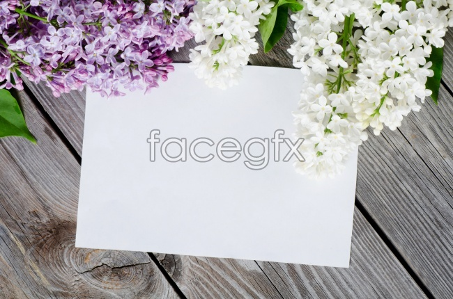 HD flowers card picture