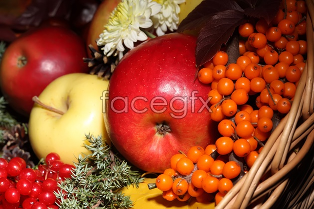 HD with a basket of fruit pictures