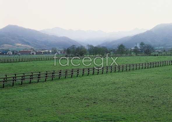 Idyllic country 26