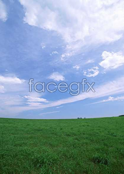 Open sky 393
