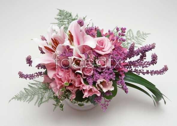 Flowers close-up 914