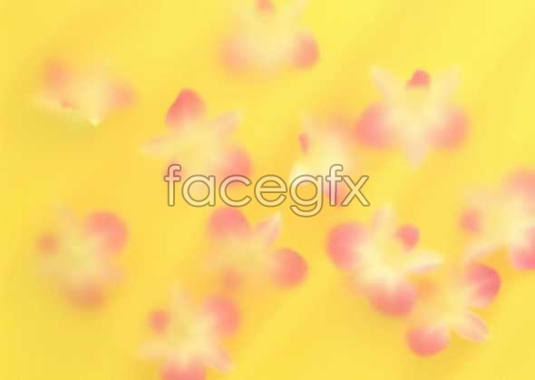 Flowers close-up 1035
