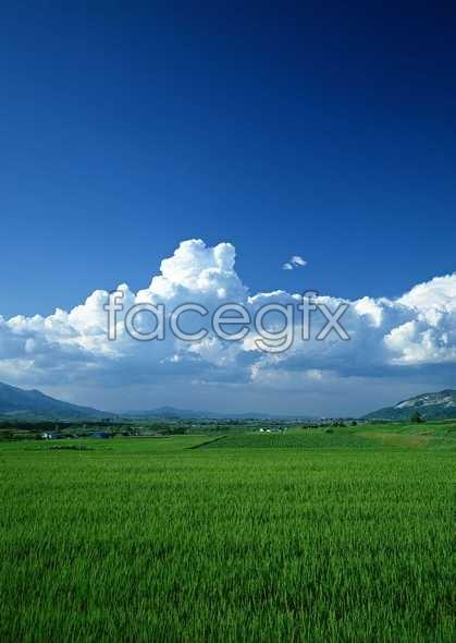 Open sky 405