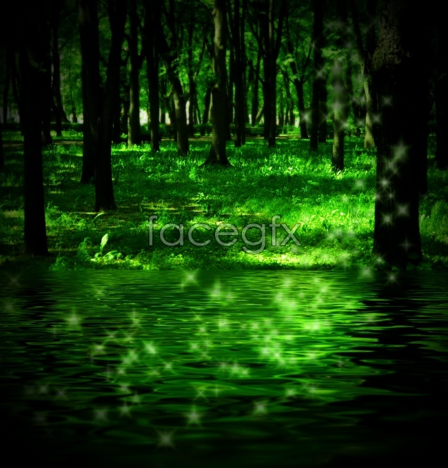 Bright green Woods picture