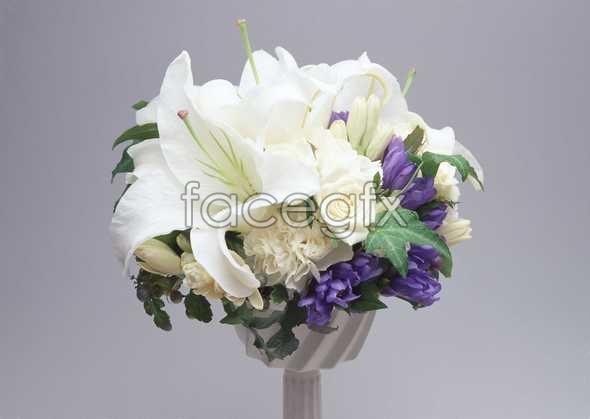Flowers close-up 930
