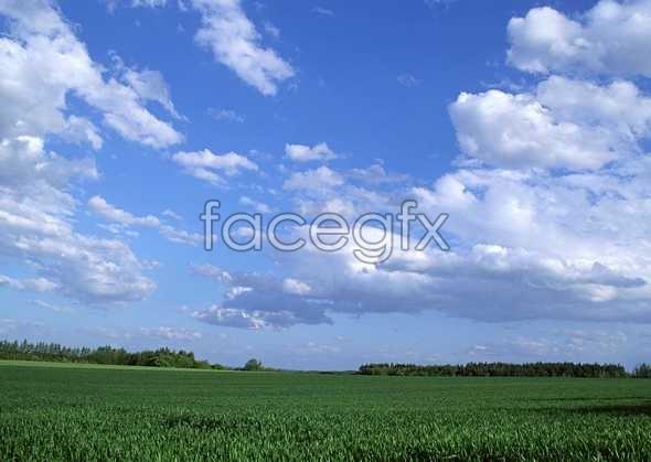 Open sky 367
