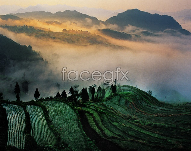 Terraces on the mountain scenery picture