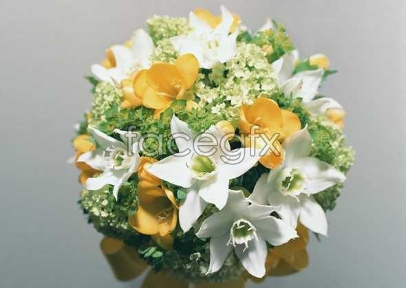 Thousand flower 345