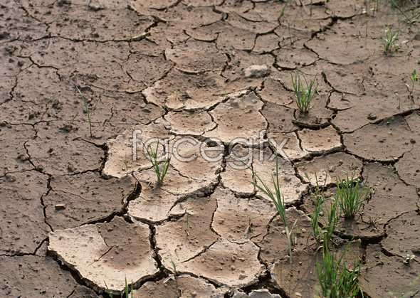 Environmental protection lands arid picture crack