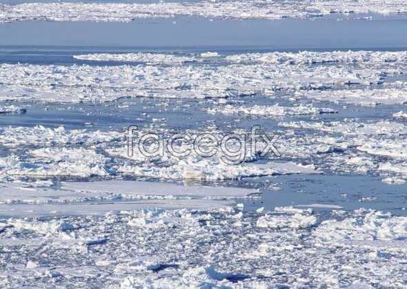 Frozen 430