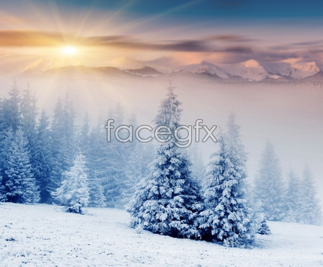 Sunset snow beautiful HD pictures
