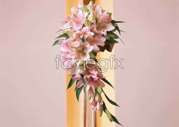 Thousands of flower 351