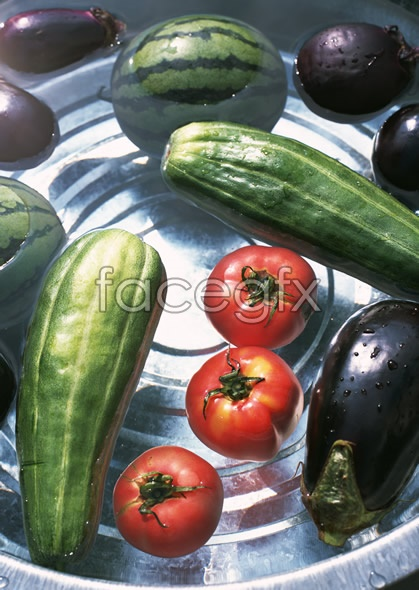 Fresh fruits and vegetables, 573