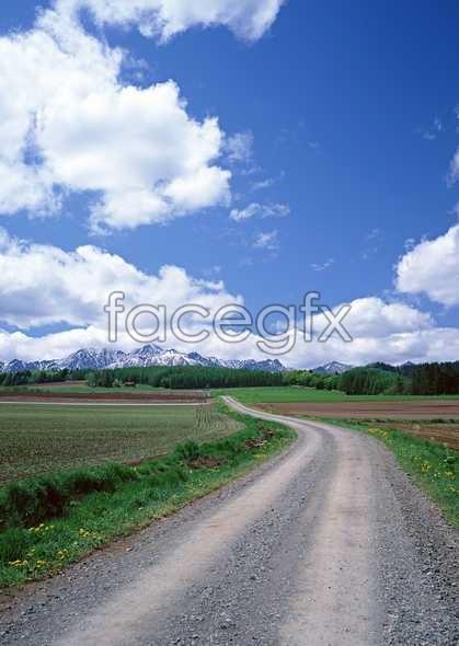 Rural idyllic 154