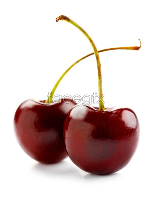 Cherry fruit material picture
