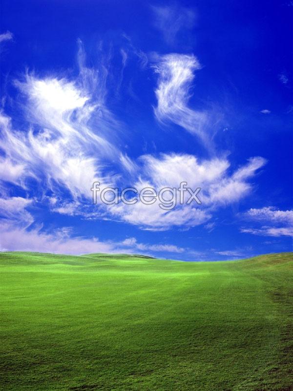 Sky meadow landscape picture