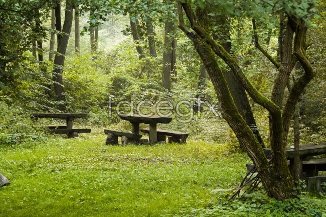 Dream Park pictures