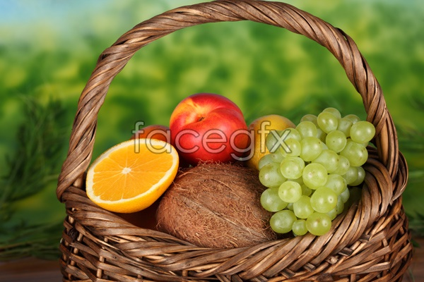 High definition grape Orange picture