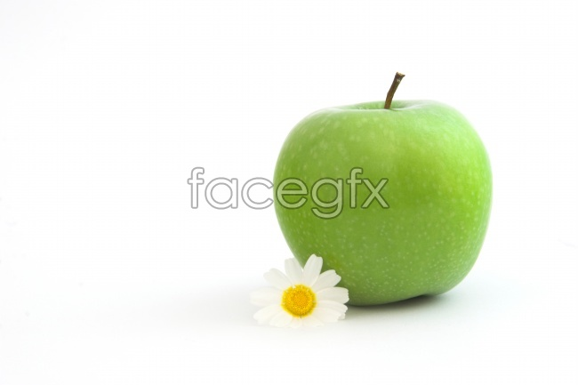 Chrysanthemum with small fresh Green Apple pictures