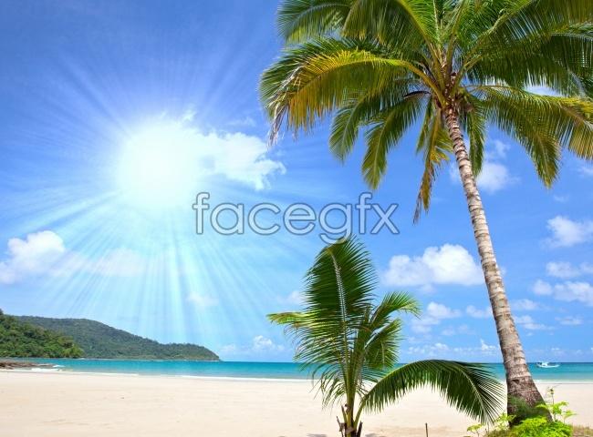 Hainan seashore landscape picture