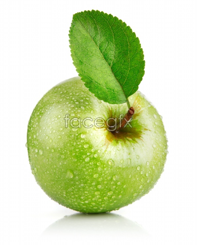 Green Apple photography pictures