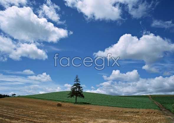 Open sky 441