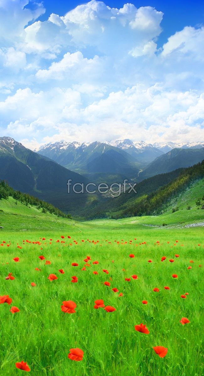 Beautiful countryside scenery picture