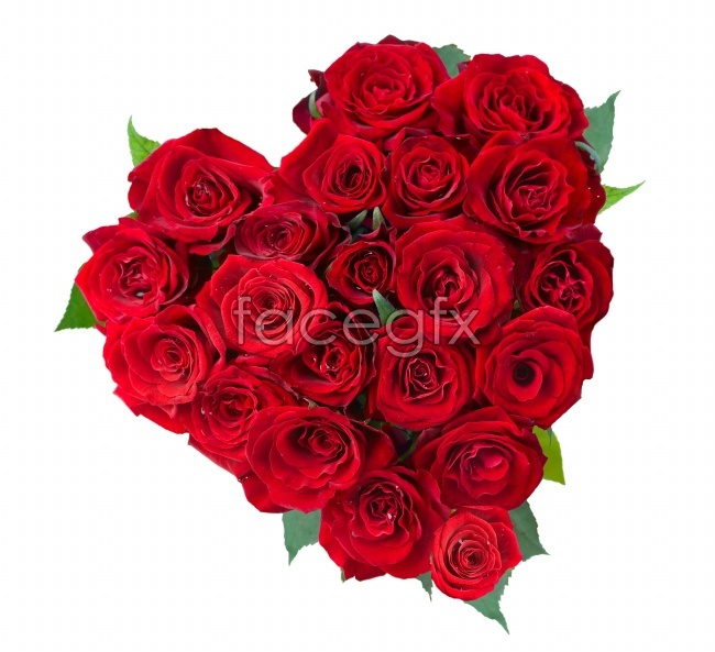 Bouquets of roses pictures