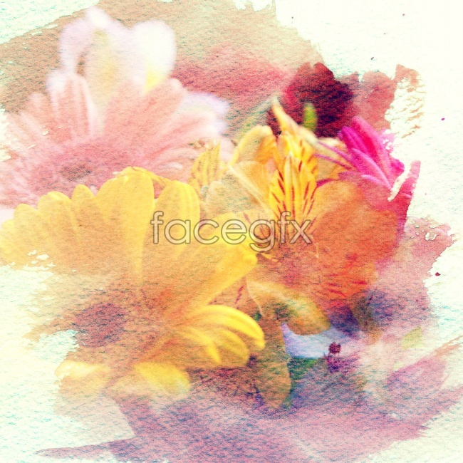 Paintings flowers art pictures