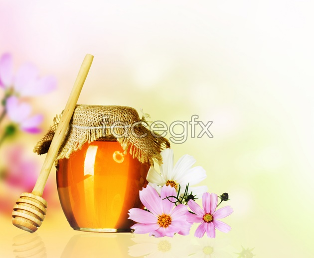 Honey flowers HD