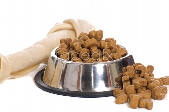 HD dog food pictures