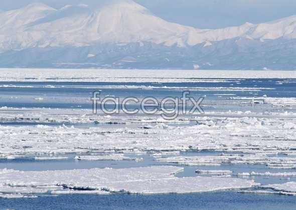Ice 441